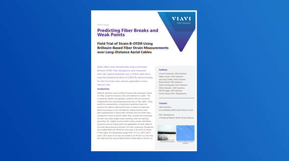 Predicting Fiber Breaks and Weak Points