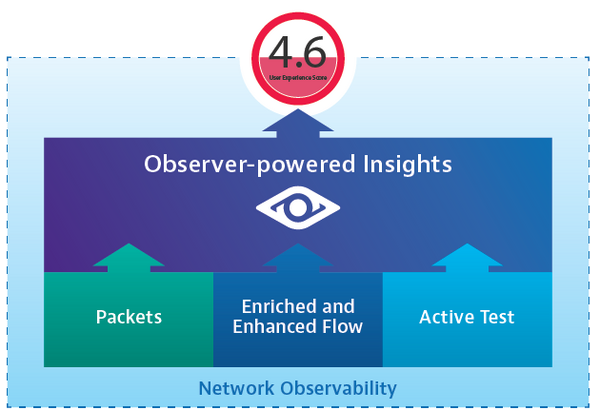 Nitro Insights Powered by Observer
