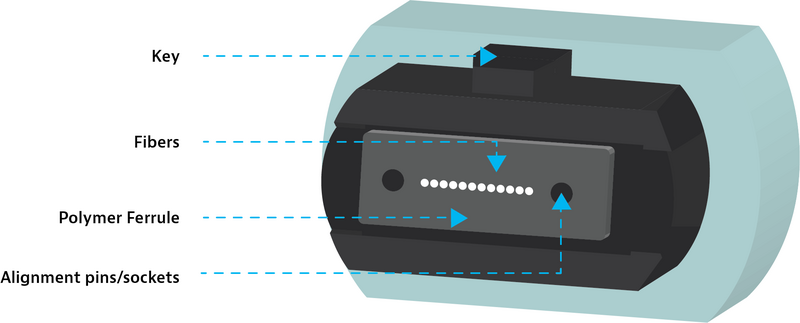 Important components of an MPO connector