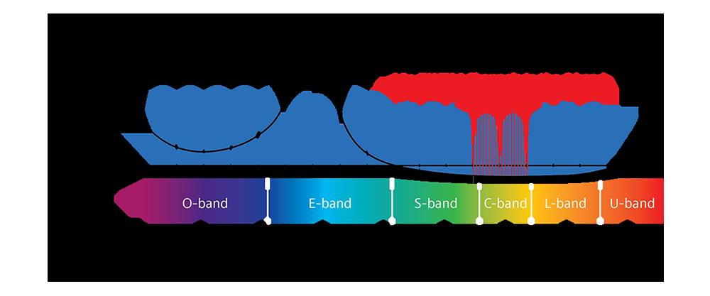 CWDM Channels