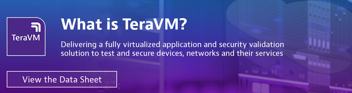 What is TeraVM?